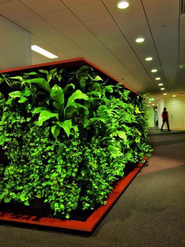 西安绿植墙装修设计