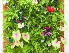 绿郡植物壁画